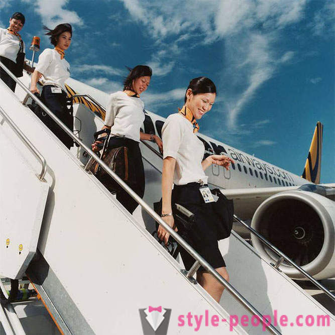 How are the everyday work of flight attendants