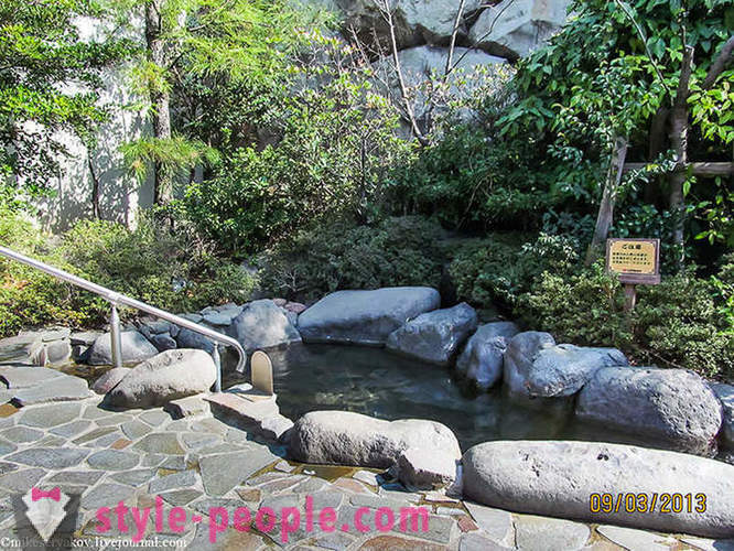 A bit about the Japanese baths and a walk along the main street of Tokyo